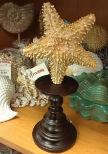 Starfish Pedestal